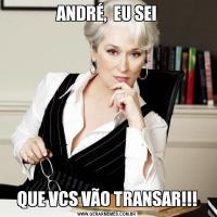 ANDRÉ,  EU SEIQUE VCS VÃO TRANSAR!!!