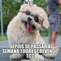EUDEPOIS DE PASSAR A SEMANA TODA ESCREVENDO TCC