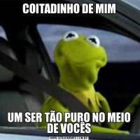 COITADINHO DE MIMUM SER TÃO PURO NO MEIO DE VOCÊS