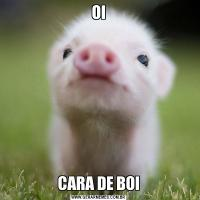 OICARA DE BOI