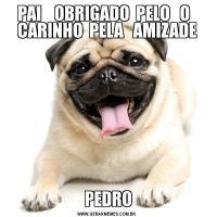 PAI    OBRIGADO  PELO   O   CARINHO  PELA   AMIZADE PEDRO