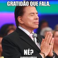 GRATIDÃO QUE FALA,NÉ?