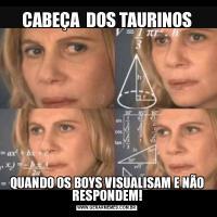 CABEÇA  DOS TAURINOSQUANDO OS BOYS VISUALISAM E NÃO RESPONDEM!