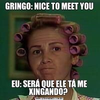 GRINGO: NICE TO MEET YOUEU: SERÁ QUE ELE TÁ ME XINGANDO?