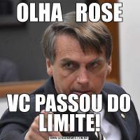 OLHA   ROSEVC PASSOU DO LIMITE!