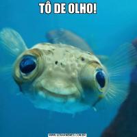 TÔ DE OLHO!