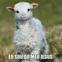 EU SOU DO MEU JESUS