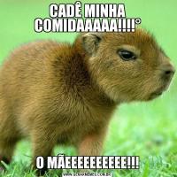 CADÊ MINHA COMIDAAAAA!!!!°O MÃEEEEEEEEEE!!!