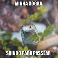 MINHA SOGRASAINDO PARA PASSEAR