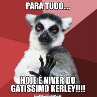 PARA TUDO....HOJE É NIVER DO GATISSIMO KERLEY!!!!