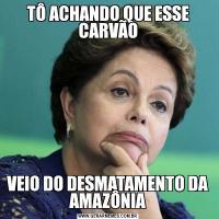 TÔ ACHANDO QUE ESSE CARVÃOVEIO DO DESMATAMENTO DA AMAZÔNIA