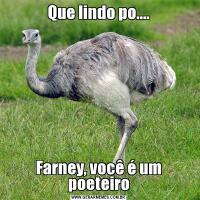 Que lindo po....Farney, você é um poeteiro
