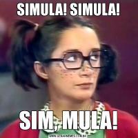 SIMULA! SIMULA!SIM, MULA!