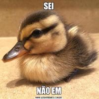 SEINÃO EM