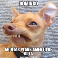 DOMINGOMONTAR PLANEJAMENTO DE AULA