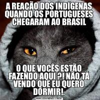 A REAÇÃO DOS INDÍGENAS QUANDO OS PORTUGUESES CHEGARAM AO BRASILO QUE VOCÊS ESTÃO FAZENDO AQUI ?! NÃO TÁ VENDO QUE EU QUERO DORMIR!.
