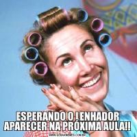 ESPERANDO O LENHADOR APARECER NA PRÓXIMA AULA!!