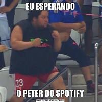 EU ESPERANDOO PETER DO SPOTIFY