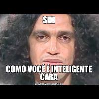 SIMCOMO VOCÊ É INTELIGENTE CARA