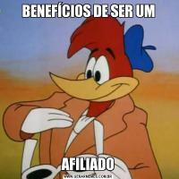 BENEFÍCIOS DE SER UMAFILIADO