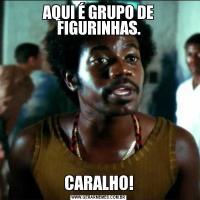 AQUI É GRUPO DE FIGURINHAS.CARALHO!