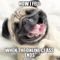 HOW I FELLWHEN THE ONLINE CLASS ENDS
