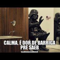 CALMA, É DOR DE BARRIGA PRÉ SAEB