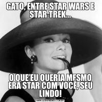 GATO, ENTRE STAR WARS E STAR TREK...O QUE EU QUERIA MESMO ERA STAR COM VOCÊ, SEU LINDO!
