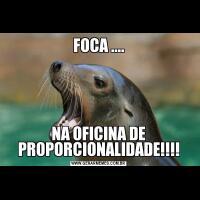 FOCA ....NA OFICINA DE PROPORCIONALIDADE!!!!