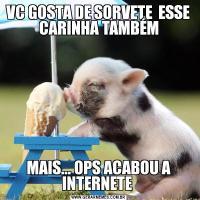 VC GOSTA DE SORVETE  ESSE CARINHA TAMBÉMMAIS... OPS ACABOU A INTERNETE