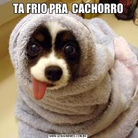 TA FRIO PRA  CACHORRO