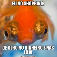 EU NO SHOPPING:DE OLHO NO DINHEIRO E NAS LOJA
