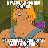 A PÁSCOA AINDA NÃO CHEGOUNÃO COMECE O CHOCOLATE AGORA AMIGUINHO
