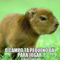 O CAMPO TÁ PEQUENO DÁ PARA JOGAR