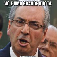 VC É UMA GRANDE IDIOTA