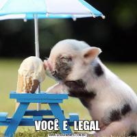 VOCÊ  E   LEGAL
