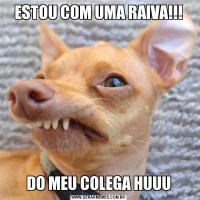ESTOU COM UMA RAIVA!!!DO MEU COLEGA HUUU