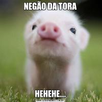 NEGÃO DA TORAHEHEHE....