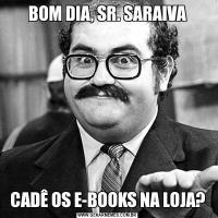 BOM DIA, SR. SARAIVACADÊ OS E-BOOKS NA LOJA?