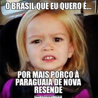 O BRASIL QUE EU QUERO É...POR MAIS PORCO À PARAGUAIA DE NOVA RESENDE