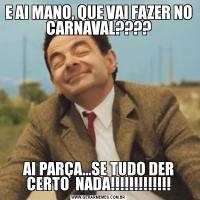 E AI MANO, QUE VAI FAZER NO CARNAVAL????AI PARÇA...SE TUDO DER CERTO  NADA!!!!!!!!!!!!!
