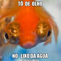 TÔ  DE  OLHONO   LIXO DA AGUA