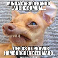 MINHA CARA OLHANDO LANCHE COMUM........ DEPOIS DE PROVAR HAMBÚRGUER DEFUMADO