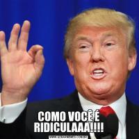 COMO VOCÊ É RIDICULAAA!!!!