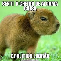 SENTI  O CHEIRO DE ALGUMA COISAÉ POLÍTICO LADRÃO