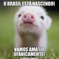 O BRASIL ESTÁ NASCENDO!VAMOS AMÁ-LO UFANICAMENTE!