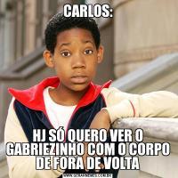 CARLOS:HJ SÓ QUERO VER O GABRIEZINHO COM O CORPO DE FORA DE VOLTA