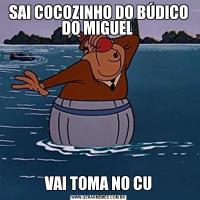 SAI COCOZINHO DO BÚDICO DO MIGUEL VAI TOMA NO CU