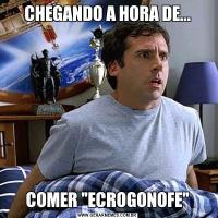 CHEGANDO A HORA DE...COMER