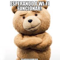 ESPERANDO O WI-FI FUNCIONAR!